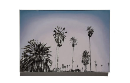 """Echo Park Palms"" 2016: Mixed Media Oil on Canvas 44″x64″"